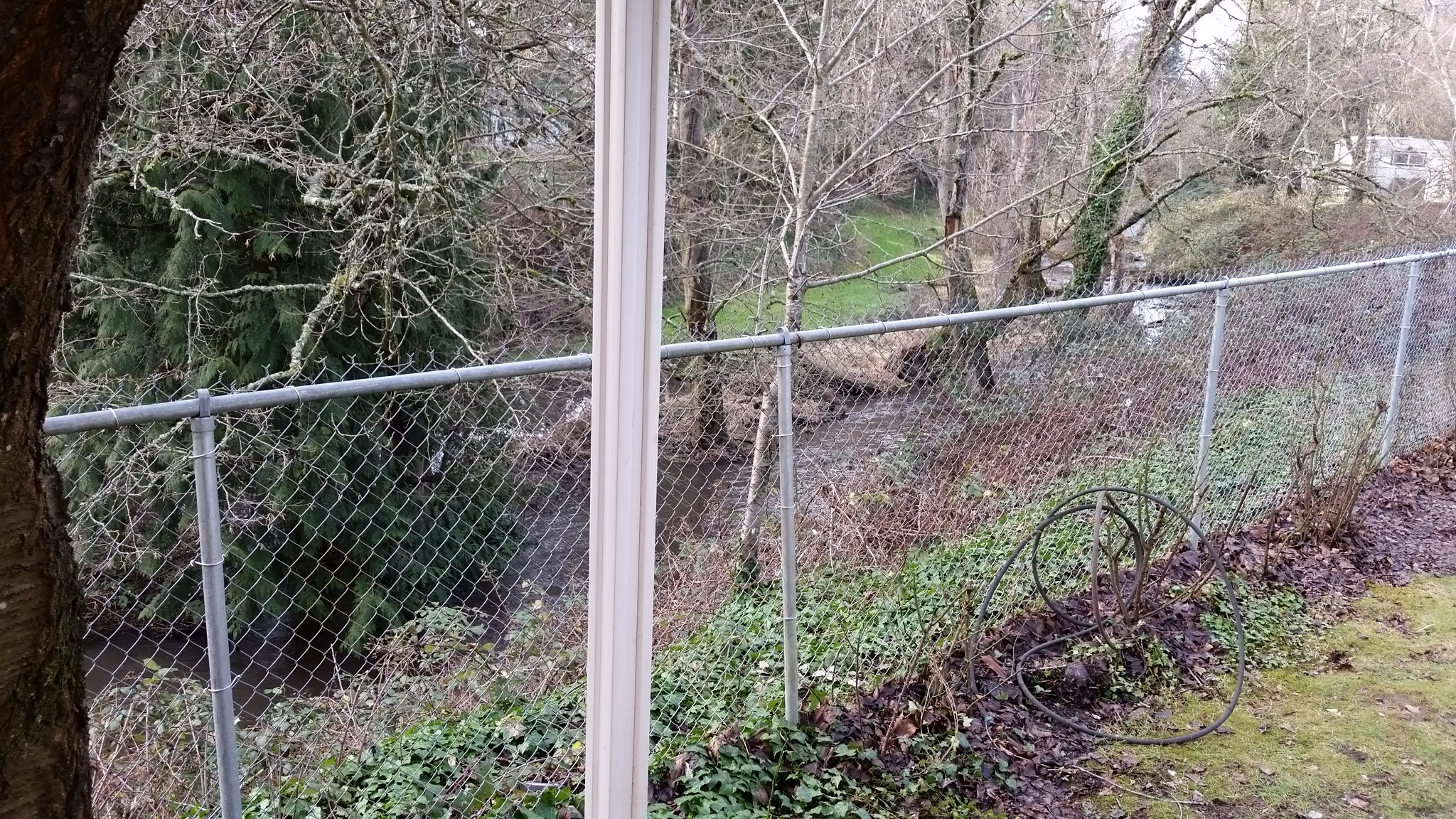 Creek View 1